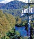 The Tahune Forest Airwalk